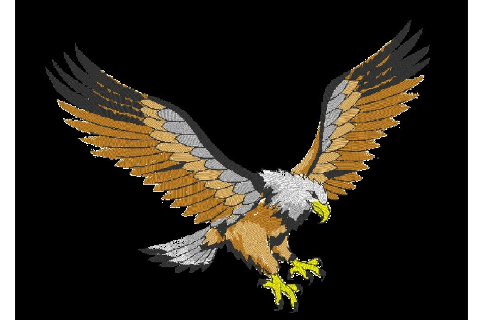 bordados termocolantes  u00c1guias clipart eagle soaring clip art eagles soaring
