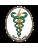 Bordados termocolantes Fisioterapia  9X7 CM